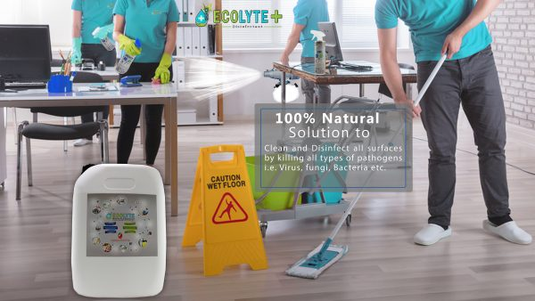 Ecolyte Multi-Surface Disinfectant 20L