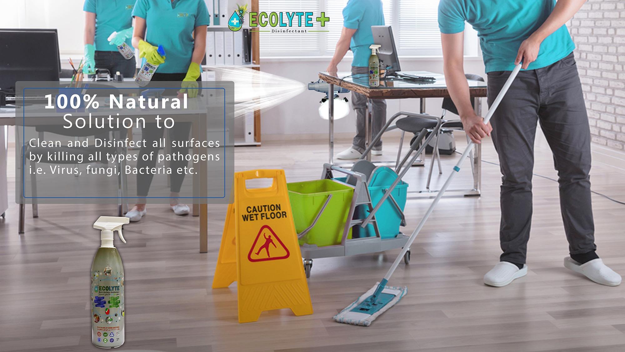 ECOLYTE-Multi-Surface-Disinfectant-1LTR-8.jpg