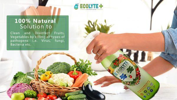 sanitizer food sanitizer