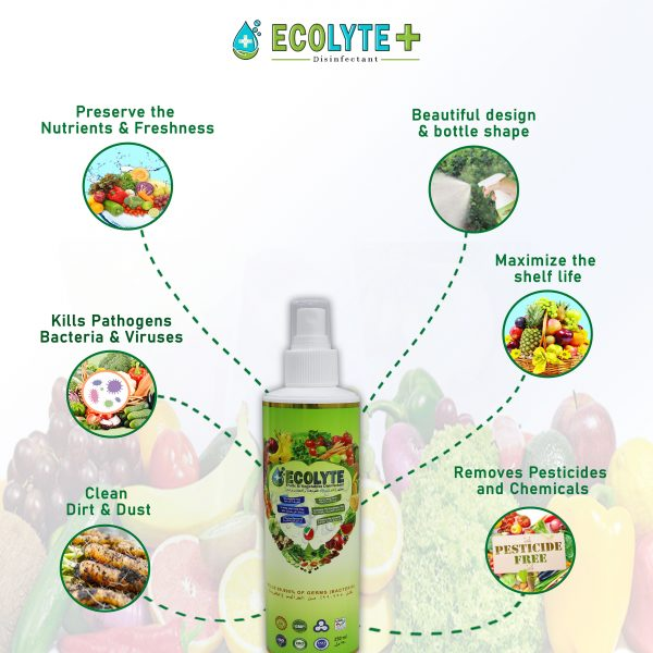 Ecolyte Fruits & Vegetable Disinfectant (6)