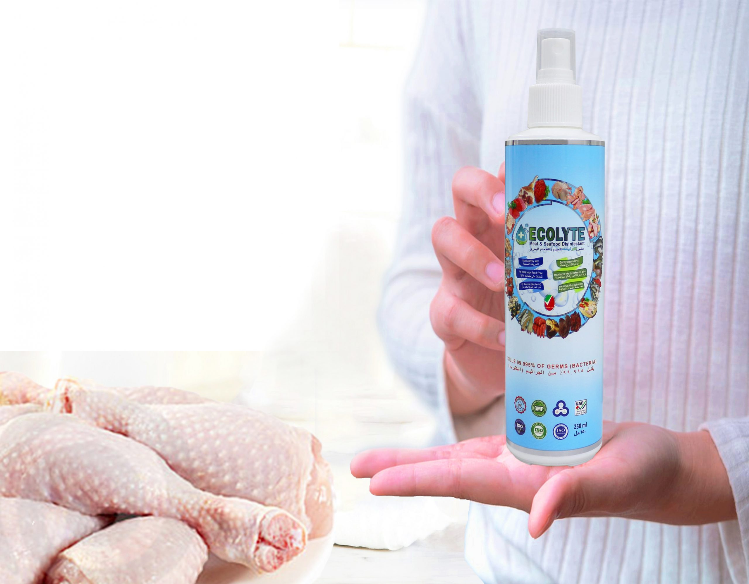 Disinfectants Manufacturing Terms and conditions