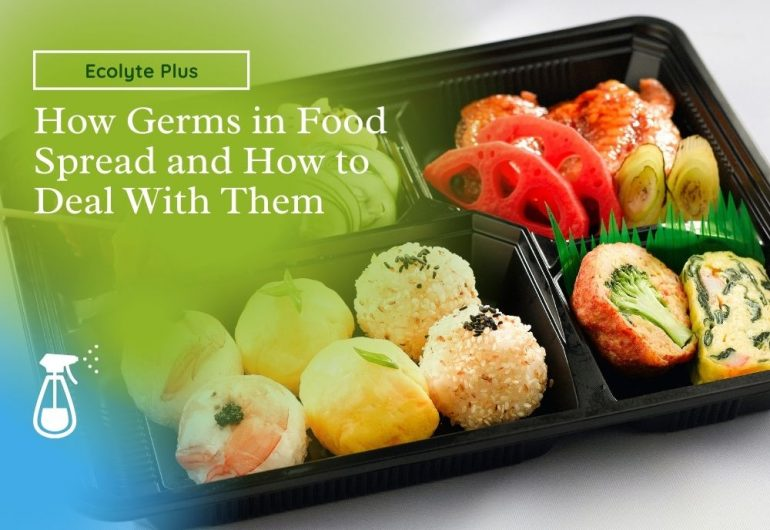 Germs Spread in Food