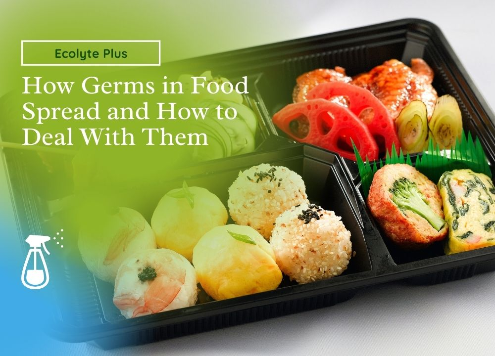 HOW GERMS SPREAD IN FOOD AND 4 SOLUTION TO DEAL WITH THEM